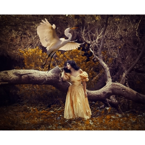 The Heron Maiden