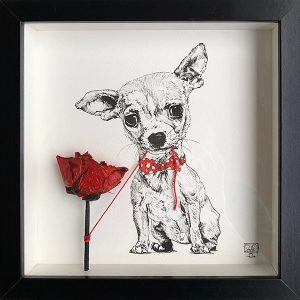 Chihuahua Red Tie Rose