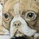 Puppy Dog Eyes: Detail