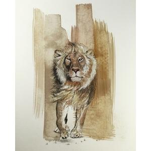 Coffee Lion Walks