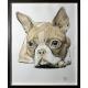 Puppy Dog Eyes: Framed