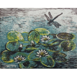 Dragonfly and Waterlilies